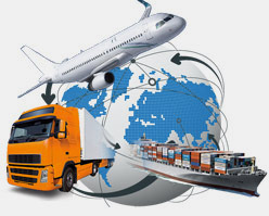goilogistic International Courier Service